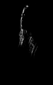 oomah-stencil-portrait.jpg